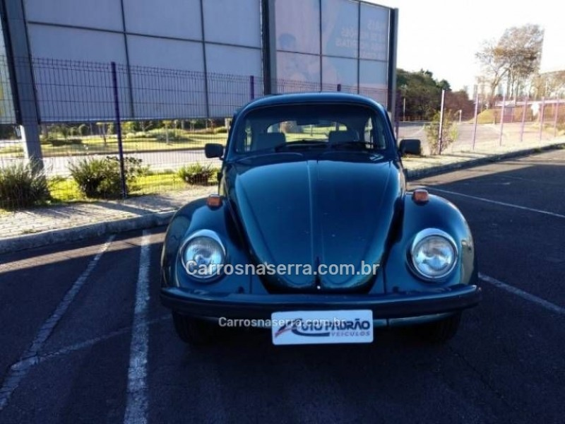 fusca 1.6 8v gasolina 2p manual 1995 caxias do sul