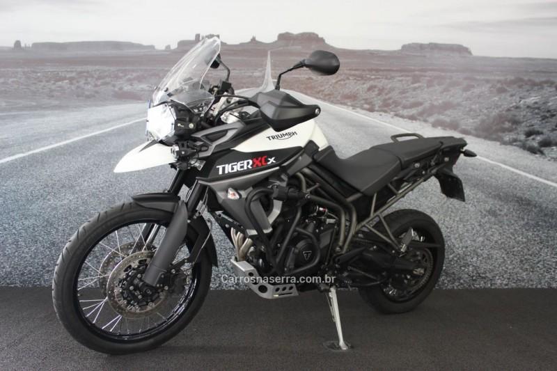 tiger 800 xcx 2018 lajeado
